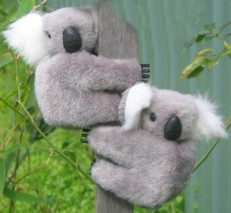 Large 3.25-inch clip-on koalas in set of six